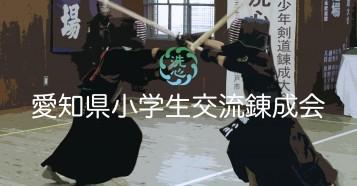 愛知県小学生交流錬成会